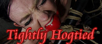 tightlyhogtied2
